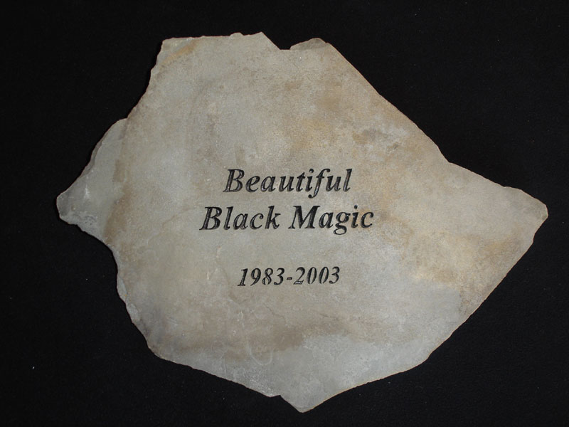 Garden stones pet memorials by on the rocks publicscrutiny Image collections